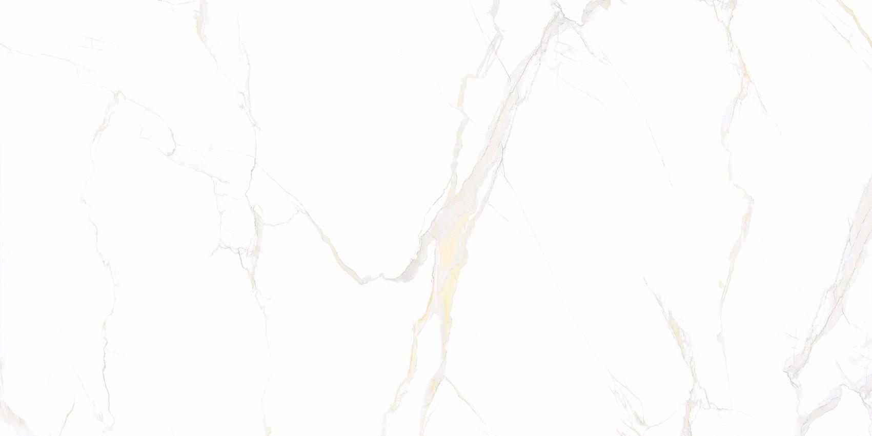 SHKALLË-KLASIK CARRARA GOLD 60x120